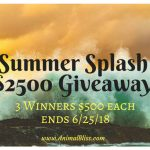 Summer Splash $2500 Giveaway, 3 Winners $500 ea, ends 6/25/18