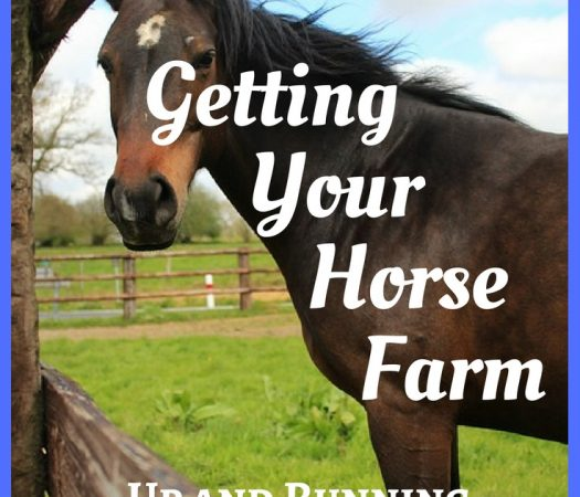 Getting Your Horse Farm Up and Running: the Essentials