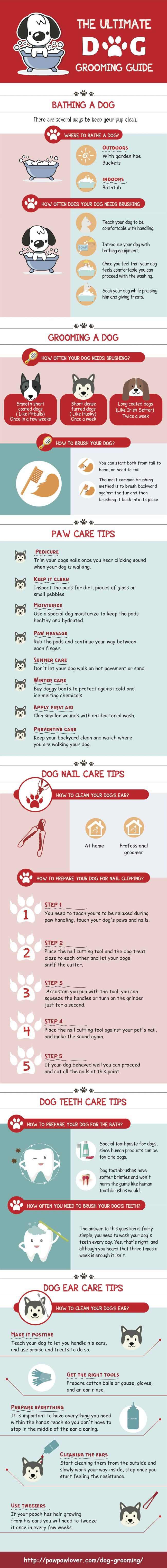 The Ultimate Dog Grooming Guide - Infographic