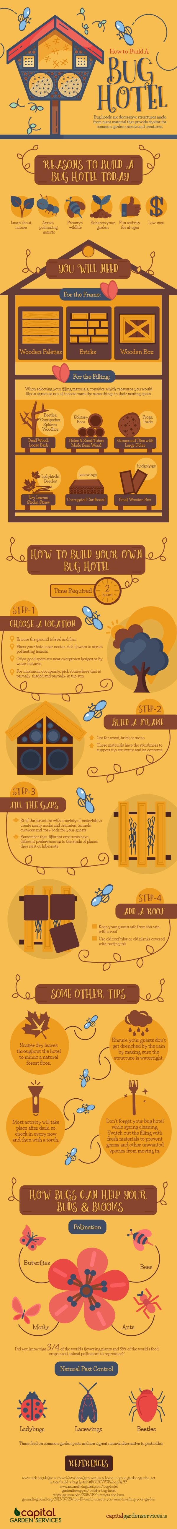 Building a Bug Hotel Infographic