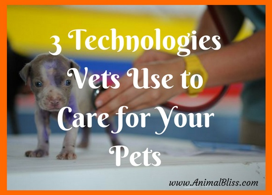 Humans are not the only ones that benefit from tech advances. Here are 3 technologies vets use to care for your furry friends.