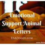 Emotional Support Animal Letters – ESADoggy