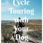 Cycle Touring with Your Dog – 7 Helpful Tips