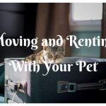 Guide on Moving and Renting With Your Pet