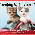 Traveling With Your Pet Between European Countries