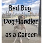 Bed Bug Dog Handler as a Career Can be a Unique and Fun