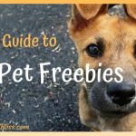 A Guide to Pet Freebies, Free Stuff for Pet Owners