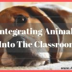 Benefits of Integrating Animals Into The Classroom