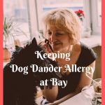 Best Ways to Keep a Dog Dander Allergy at Bay