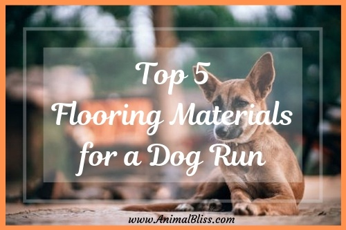 Top 5 Flooring Materials For A Dog Run Animal Bliss