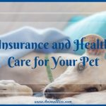 Guide to Insurance and Health Care for Your Pet