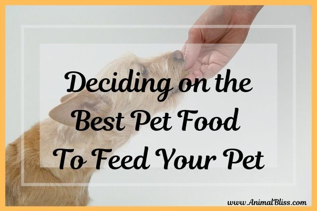 Deciding on the Best Pet Food to Feed Your Pet