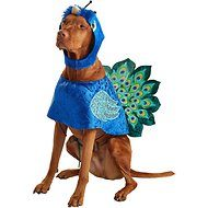 Cute Halloweed Costume Ideas for Your Pets