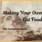 Making Your Own Cat Food: The Complete Guide
