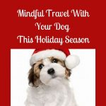 Mindful Travel With Your Dog This Holiday Season
