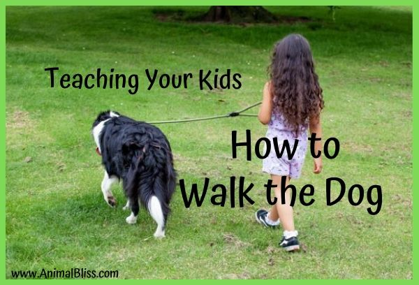 Teaching Your Kids to Walk the Dog